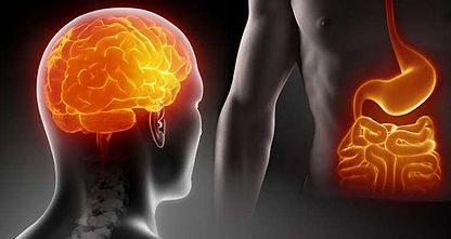 Έχουμε 2 εγκεφάλους και επιστημονικά τεκμηριωμένο!!